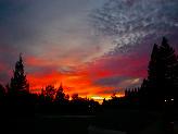 Orange_dawn